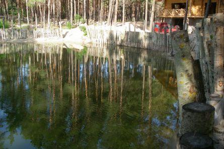Фото укрепления берега деревянными сваями.